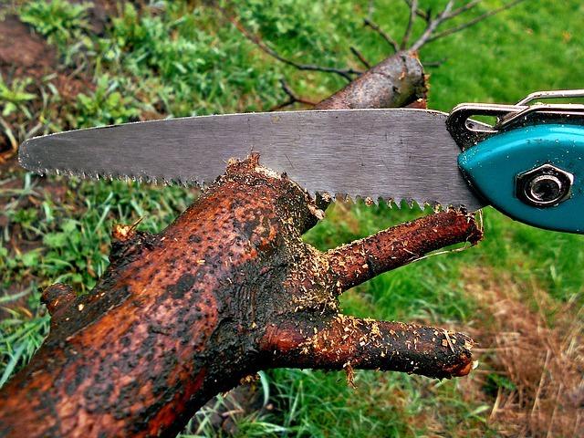 Le couteau-scie : un outil polyvalent pour élaguer les arbres du jardin